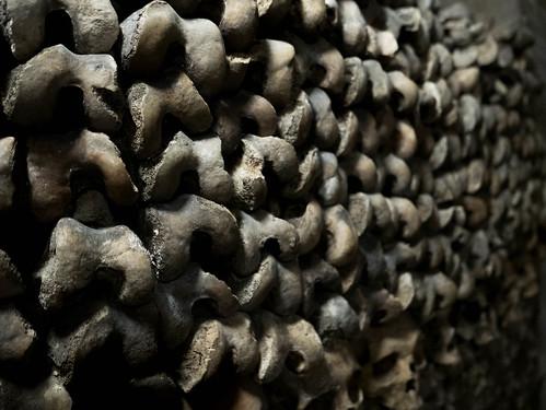 Stack of bones... | Sam The Bearded Guy | Flickr