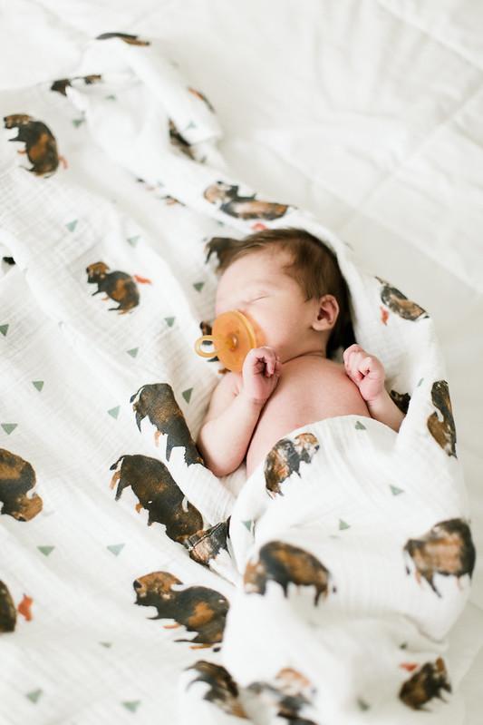 babyatticus-7491