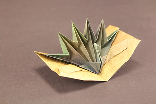 Peacock Pop-Up Card designed by Jeremy Shafer, folded by me. | by origami_8