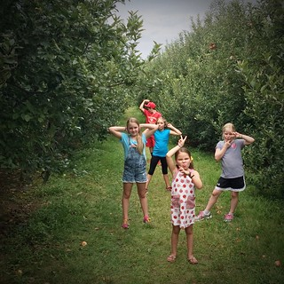 Apple picking 2015 | by thelucaszoo
