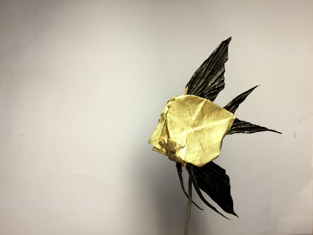 Veitail Angel Fish Design By Quentin Trollip Fold Me I Flickr Origami Diagrams Used Tissue Foil Paper