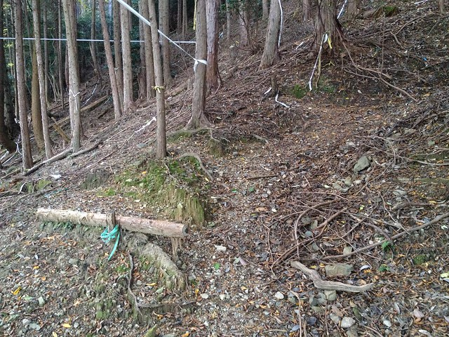朝倉山 真禅院ルート 階段跡