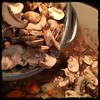 #Veal #Stew #homemade #CucinaDelloZio - add cremini mushrooms