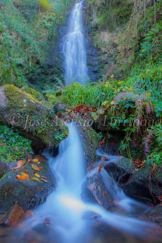 Parque Natural de Gorbeia #DePaseoConLarri #Flickr      -2820
