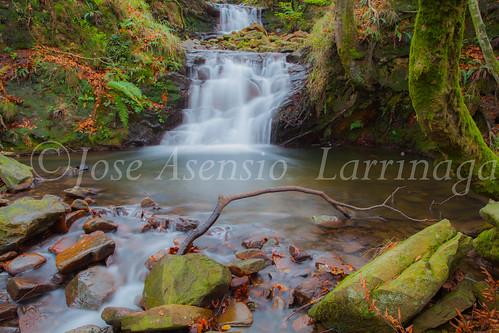 Parque natural de Gorbeia #DePaseoConLarri #Flickr      -2003