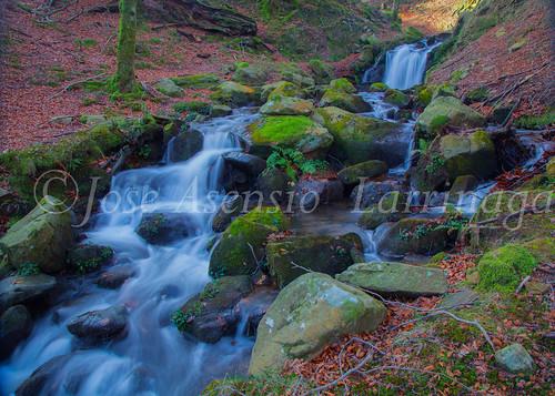 Parque Natural de Gorbeia   #DePaseoConLarri #Flickr      -2805