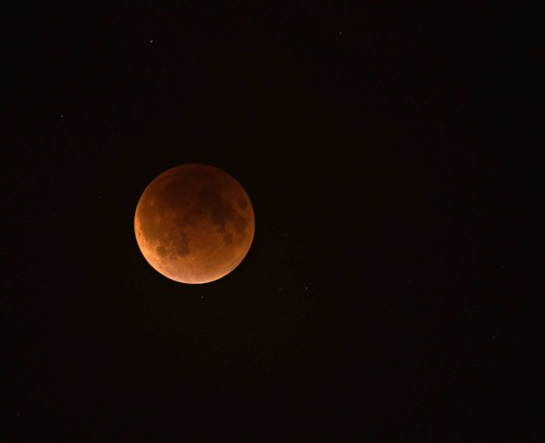 Super Moon Eclipse in NYC | by The Shared Experience