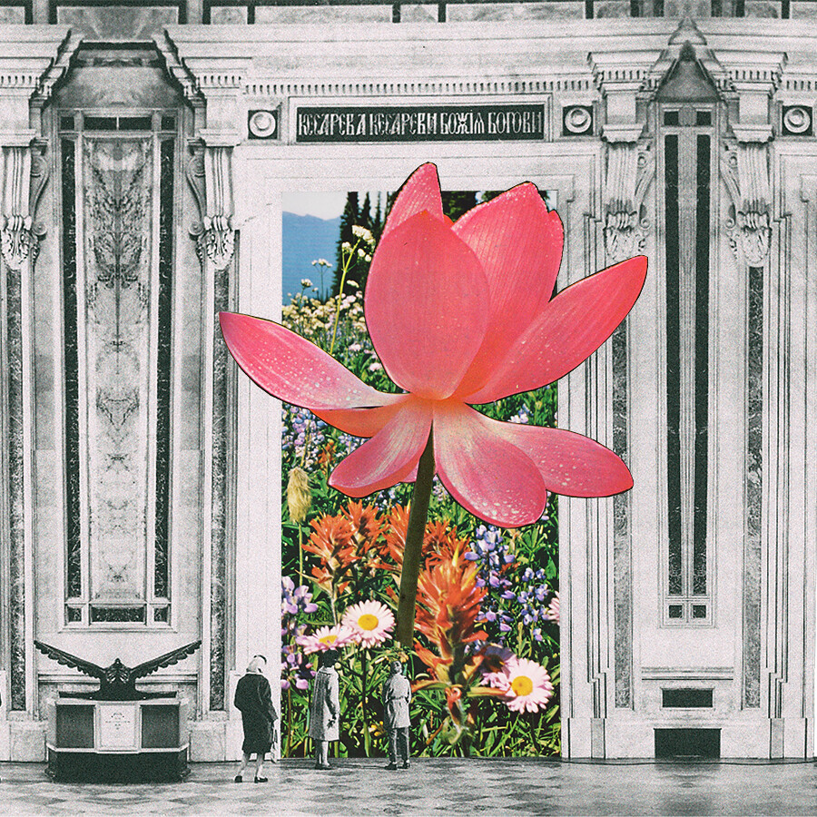 The magical lotus flower facebookcollagealinfinit flickr the magical lotus flower by mariano peccinetti collage art izmirmasajfo