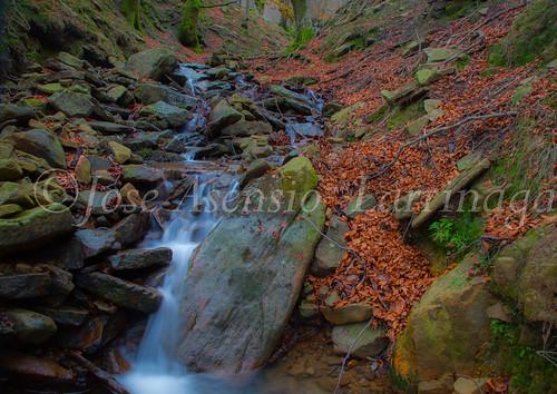 Parque natural de Gorbeia #DePaseoConLarri #Flickr      -2071