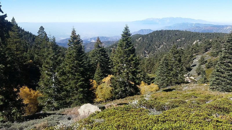 View west from high on the San Bernardino Peak Trail