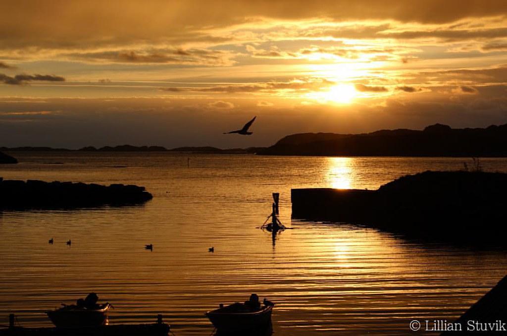 Yesterday's sunset @ Skipavika , Bømlo #skipavik #bømlo #sunset #utno #solnedgang #ilovenorway_hordaland #hordaland #norway #norge #potd #photooftheday #canonphotography #canoneos1200d #canoneos #speilreflekskamera #nature #natur #bliss #ogskuldrenesenke
