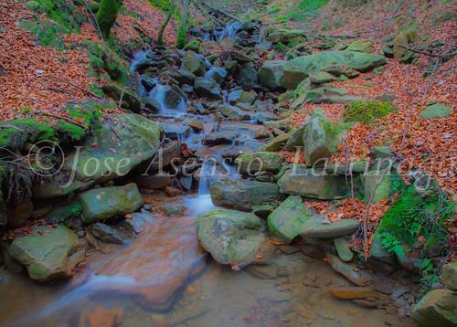 Parque natural de Gorbeia #DePaseoConLarri #Flickr      -2064