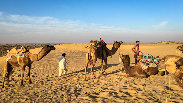 Camel drivers in Khuri sand dunes, near Jaisalmer, India ジャイサルメール、クーリー砂丘のラクダ使いたち