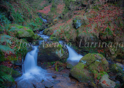 Parque Natural de Gorbeia   #DePaseoConLarri #Flickr      -2776