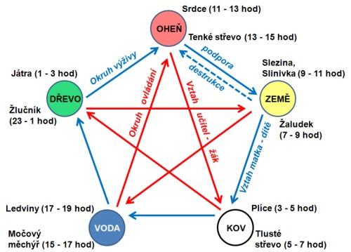 5 elementov, základy celostného zdravia
