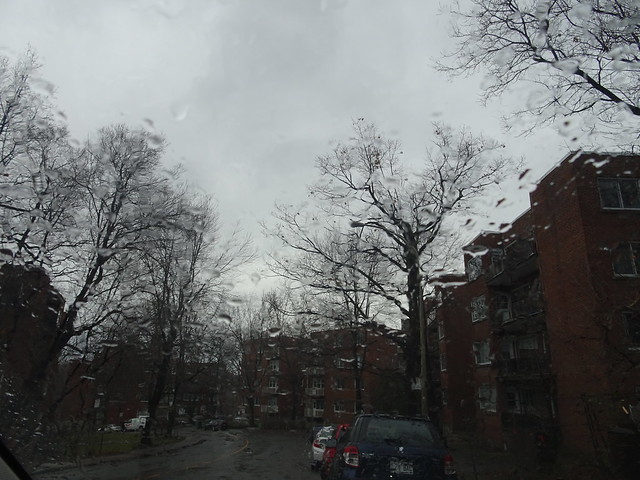 Through the Rain-Splashed Windshield