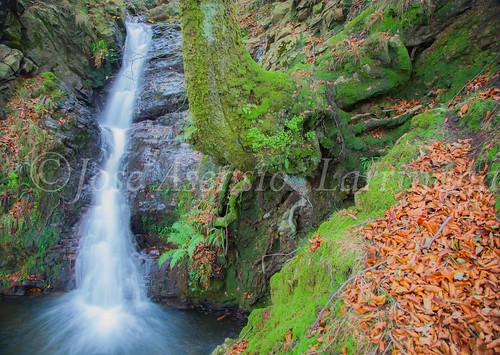 Parque natural de Gorbeia #DePaseoConLarri #Flickr      -2023