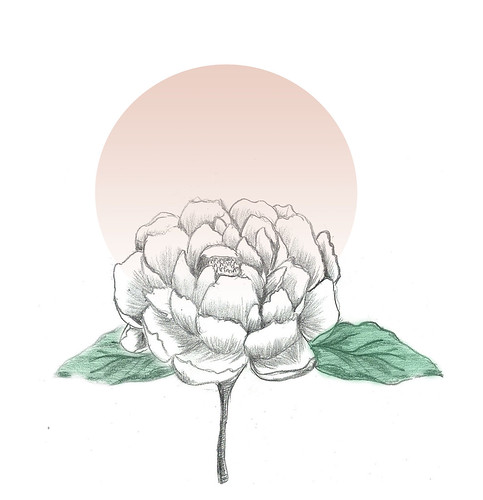 pink peony ink + digital | by a d i t z