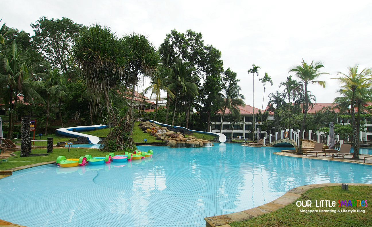 Adult Pool with Slides