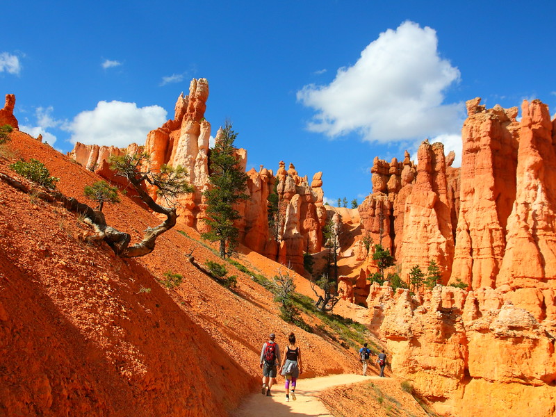 IMG_5014 Queens Garden Trail, Bryce Canyon National Park