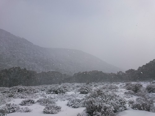 Awesome trip back country, Mt St Gwinear to Baw Baw and back, stopping for a few hours on the lifts. 16km round trip. Had the Gwinear Shelter all to ourselves, for a nice and comfy sleep before heading out. Snowed the whole time!