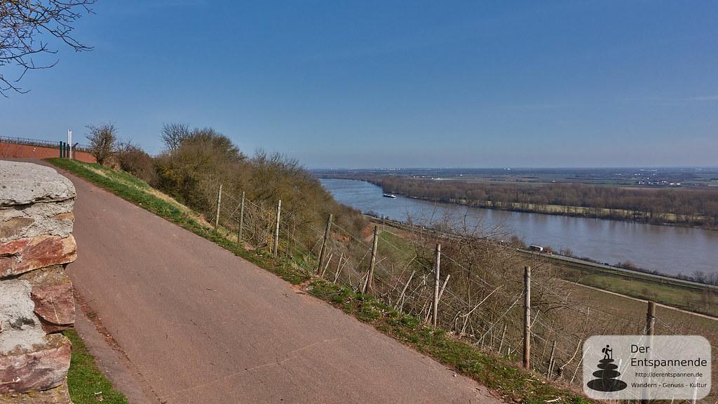 Rhein am Roten Hang Nierstein