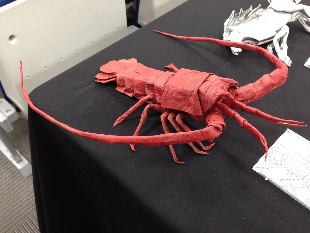 Japanese Spiny Lobster By Satoshi Kamiya