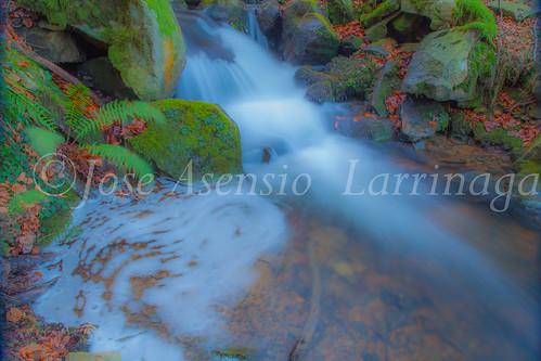 Parque Natural de Gorbeia   #DePaseoConLarri #Flickr      -2761