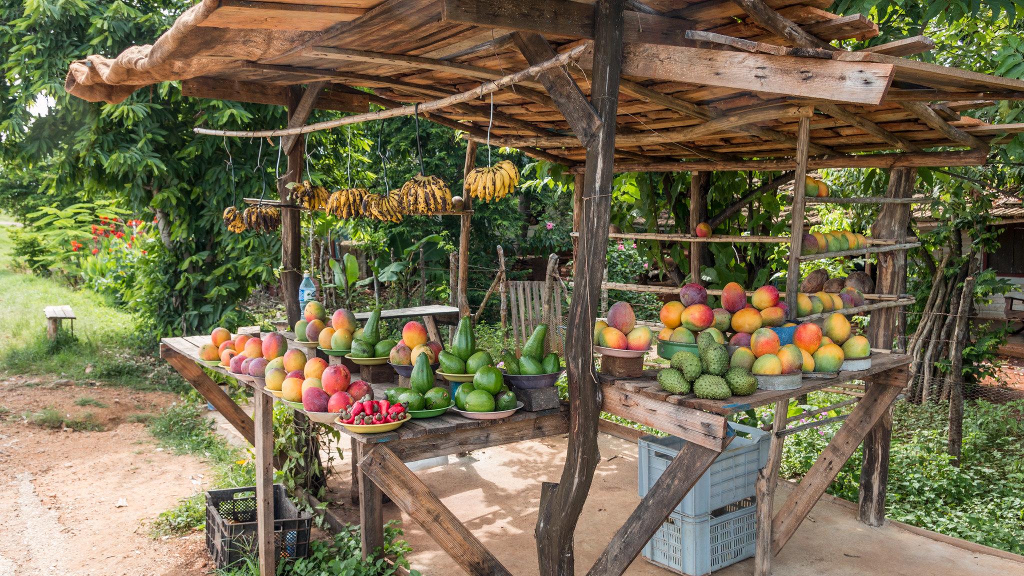 Photos blog - Trinidad - [Cuba]