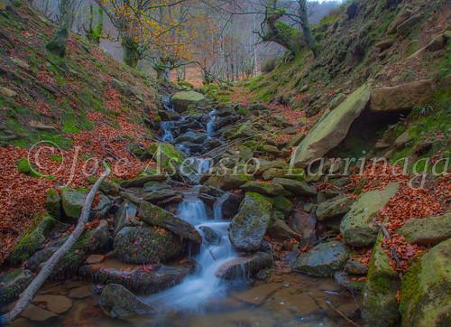Parque natural de Gorbeia #DePaseoConLarri #Flickr      -2073