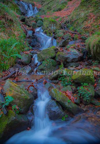 Parque Natural de Gorbeia   #DePaseoConLarri #Flickr      -2780