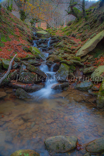 Parque natural de Gorbeia #DePaseoConLarri #Flickr      -2074