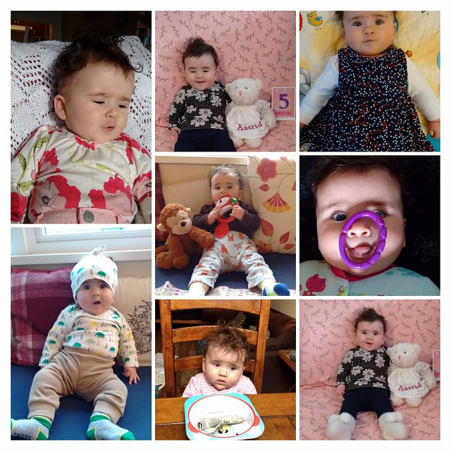 Funny Faces Collage