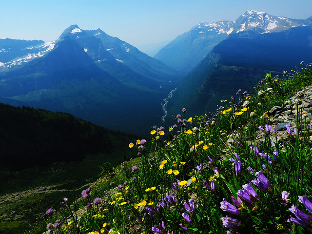The Highline Trail, Glacier National Park, Montana, USA