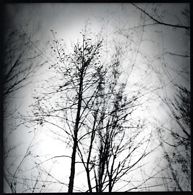 darkroom14