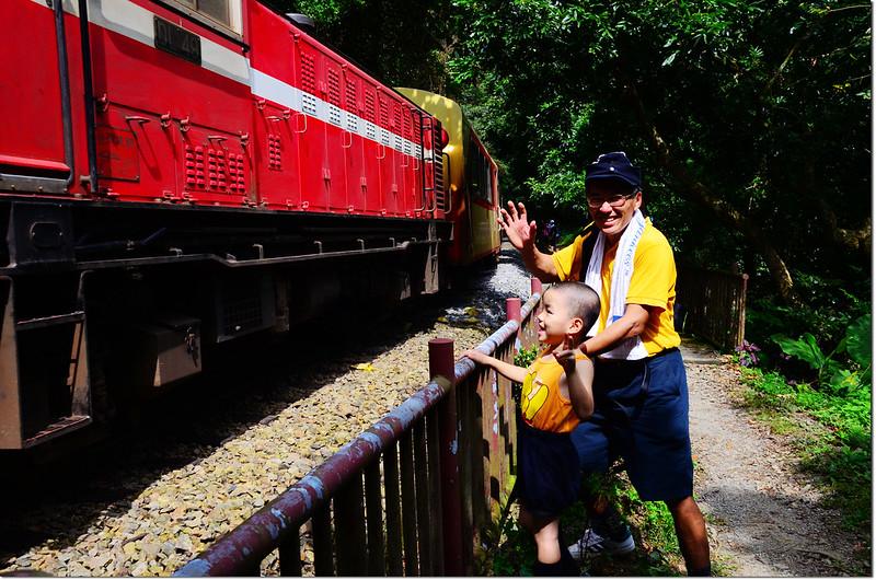 阿里山森林火車 4