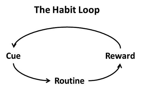 Rangkuman buku The Power of Habit