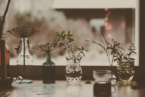 Winter flowers and glogg. | by oonajuliar