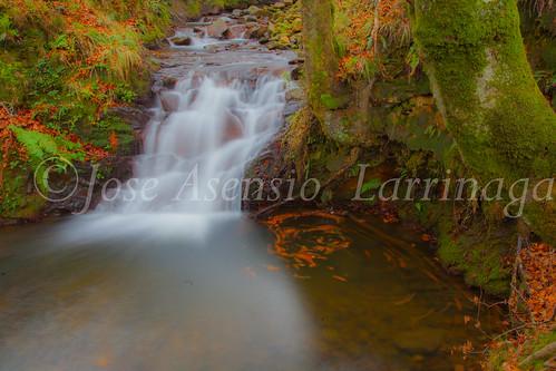 Parque natural de Gorbeia #DePaseoConLarri #Flickr      -2008