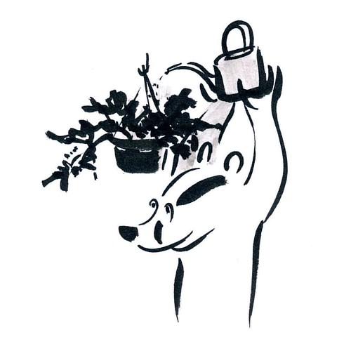 It still needs water #badger #badgerlog #parenting #watering #wateringcan #wateringplace #flowers #fucsia #hangingplants #hangingplant #hangingplanter #everydaylife