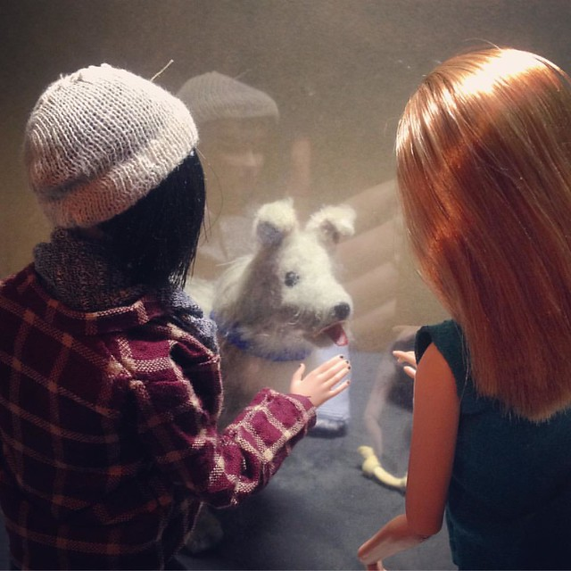 'What about this one? The sign says he's a Greyhound/Collie mix, only two years old...' . #barbie #barbiecollector #barbiecustom #dollsofinstagram #dollstagram #instadoll #artdoll #poseableartdoll