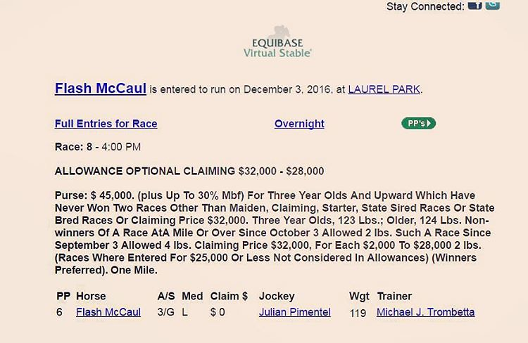 Flash McCaul will be looking for his 3rd winner's circle p