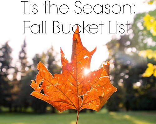 fallbucketlist | by lifeinthemeow