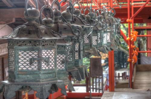 Kasuga Taisya Shrine on NOV 30, 2016 vol01 (6)