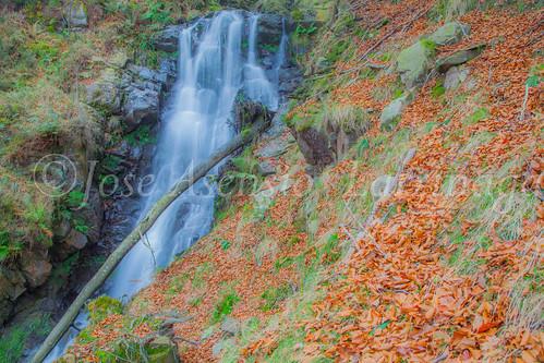 Parque natural de Gorbeia #DePaseoConLarri #Flickr      -2031