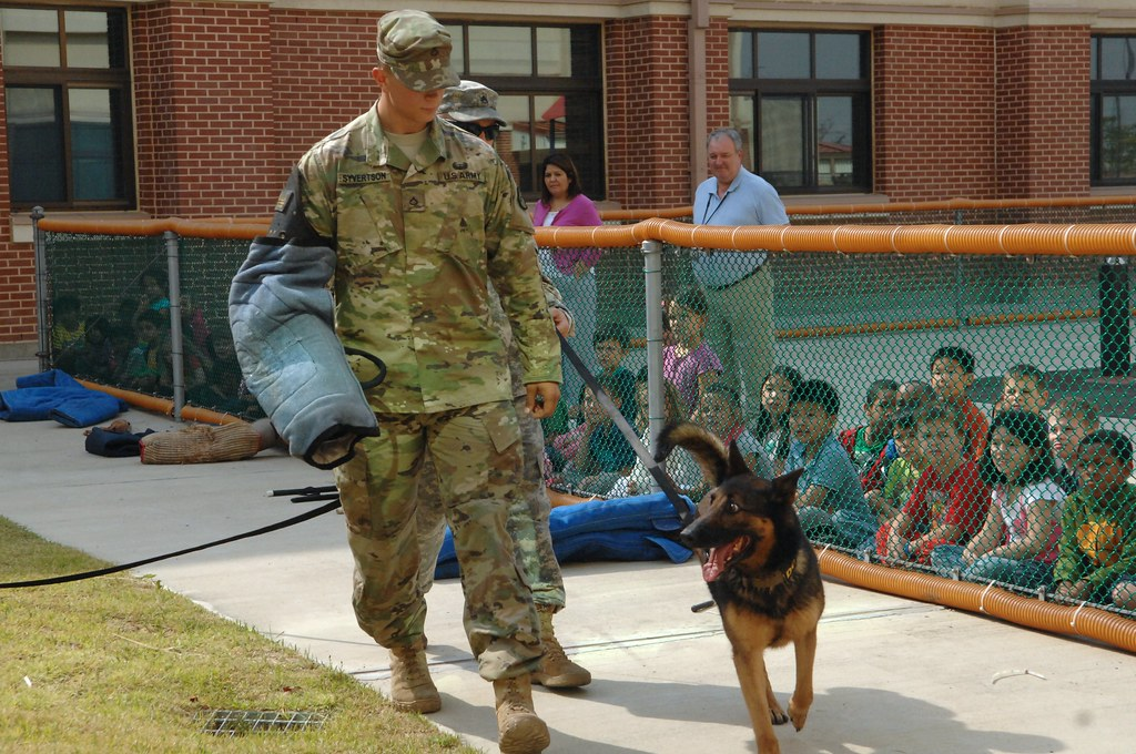 Mp Working Dogs Visit Humphreys Elementary School First Gr Flickr