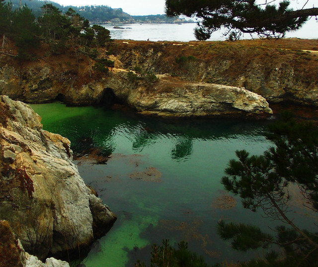 Best Autumn Hikes In California: Point Lobos State Natural Reserve, California, USA