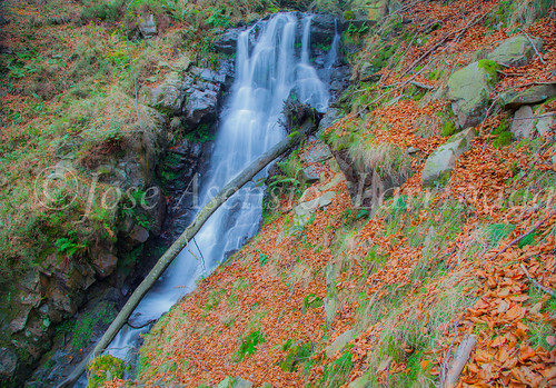 Parque natural de Gorbeia #DePaseoConLarri #Flickr      -2035