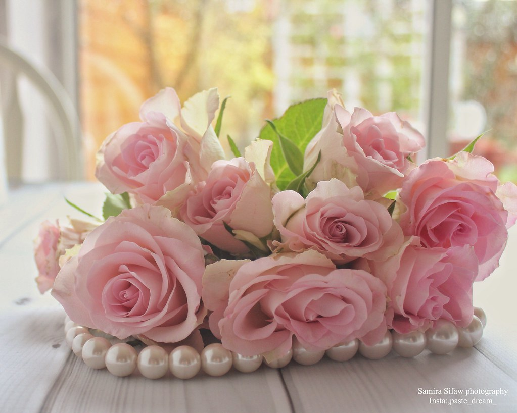Soft Touch Lovely Pink Flowers Samira Flickr