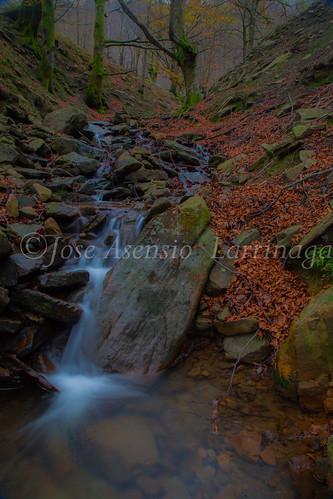 Parque natural de Gorbeia #DePaseoConLarri #Flickr      -2070
